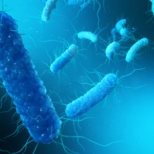 Image of blue clostridium difficile bacteria