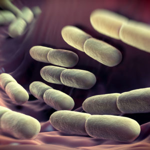 White-clostridium-difficile-on-stomach-lining