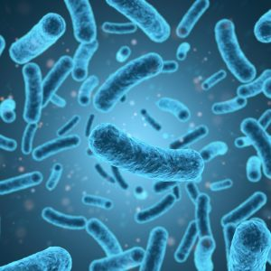 Clostridium difficile Toxoid A