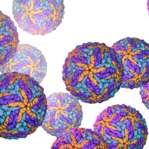 Orange-and-purple-jev-particles-on-white-background