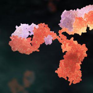 Orange and white antibody on black background