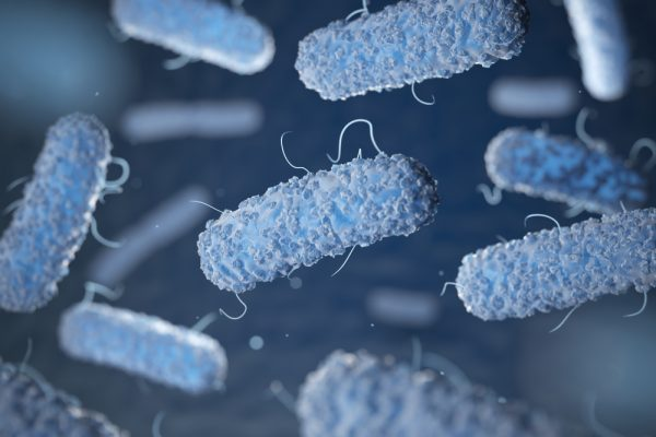 Blue listeria cells floating