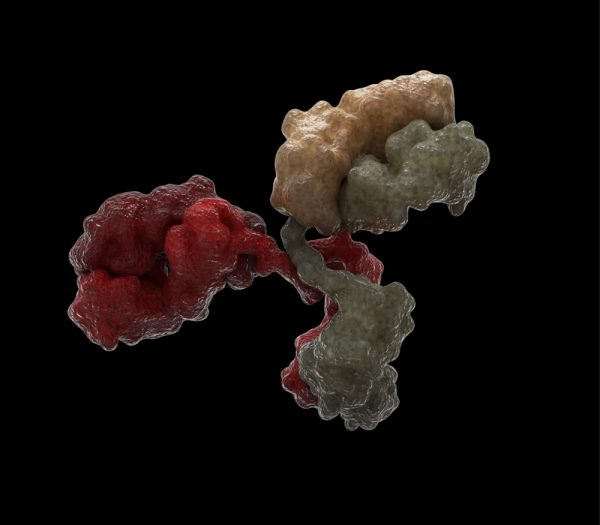 Antibody on black background