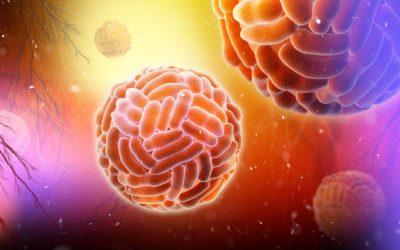 Overcoming Zika-Dengue cross-reactivity: the highly specific immunoassays your lab needs