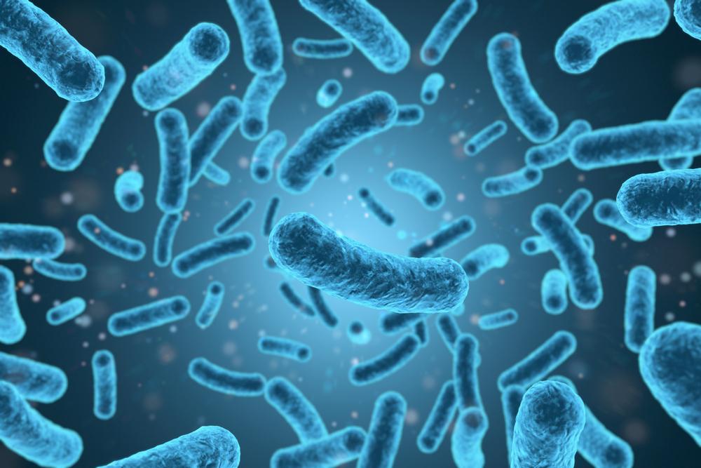 O Antigen Listeria monocytogenes...