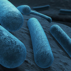 Diphtheria toxoid (frozen)