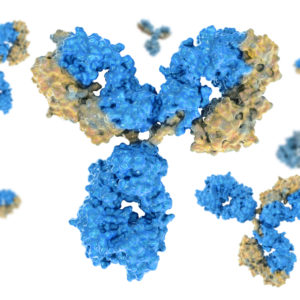 Blue and yellow antibodies on white background
