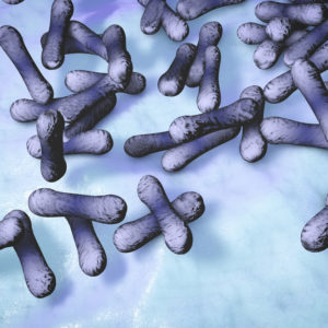 Purple shigella bacteria against blue background